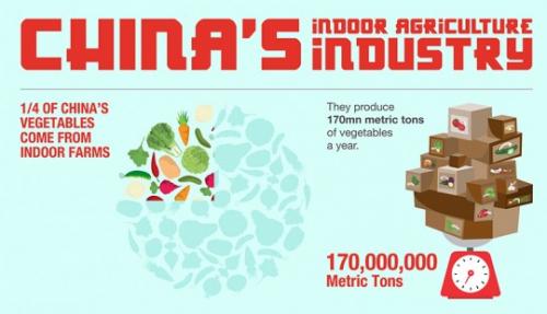čínský indoor zemědělský průmysl