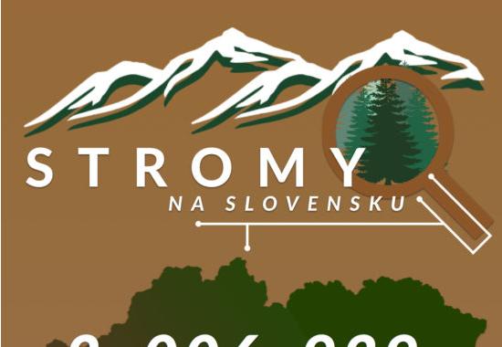 Které stromy najdete na Slovensku?