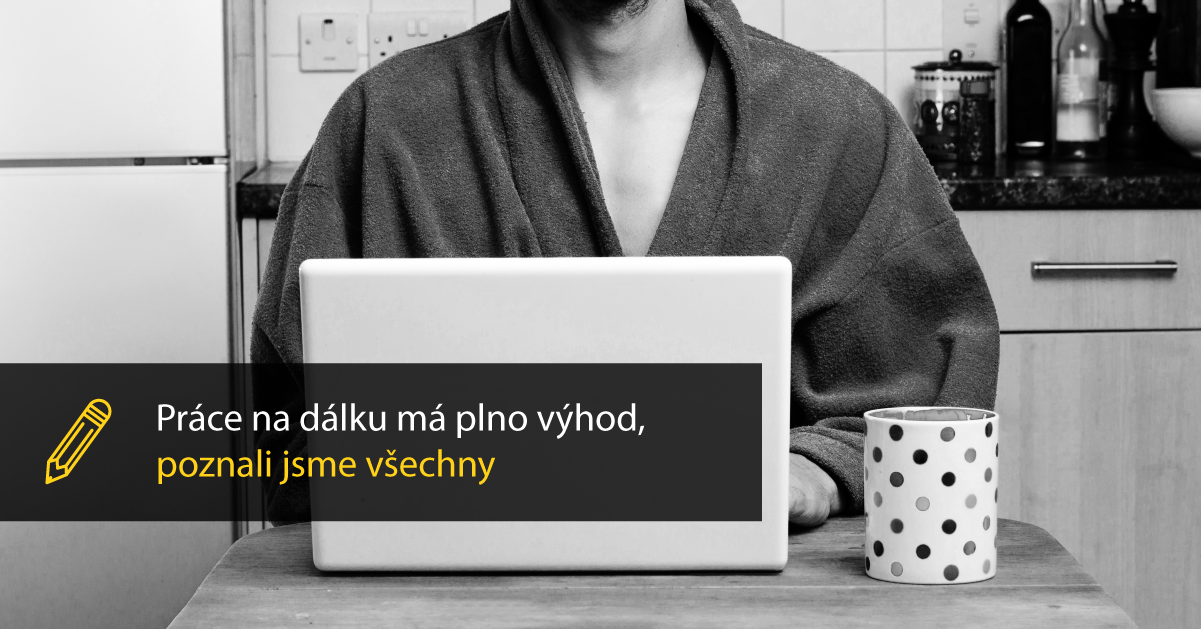 Jak To Máme S Prací Na Dálku Ve Včelišti.