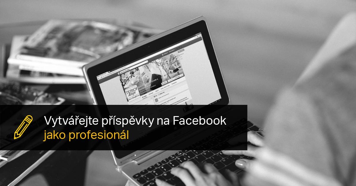 Pravidla Příspěvků Na FB.