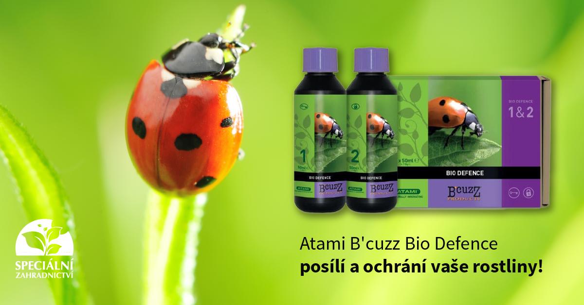 atami_bcuzz