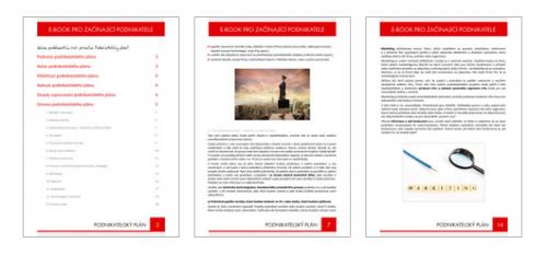 E-book pro začínající podnikatele - Jak získat a provozovat doménu