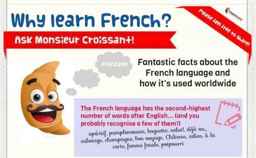 Proc se ucit francouzstinu - infografika - nahled