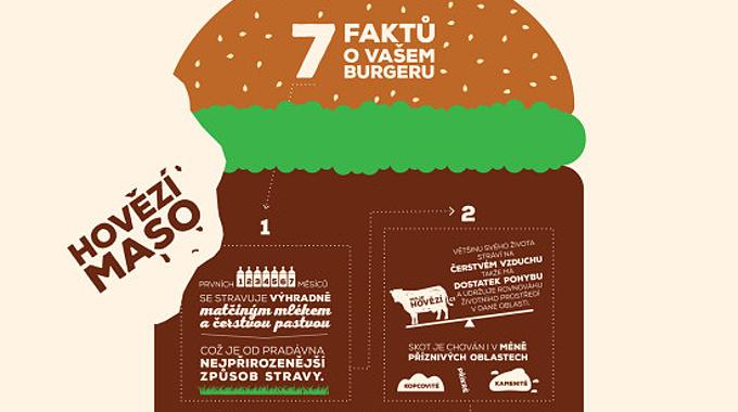 burger_infografika - maso