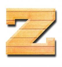 """Problematika psaní písmene """"z"""""""
